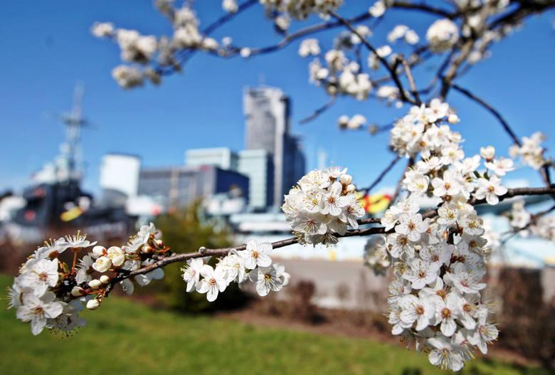 Wiosna wisi w powietrzu. Marcowe przesilenie jest symbolem nowego początku, do którego trzeba się odpowiednio przygotować. Chyba wszystkim zdarzyło się