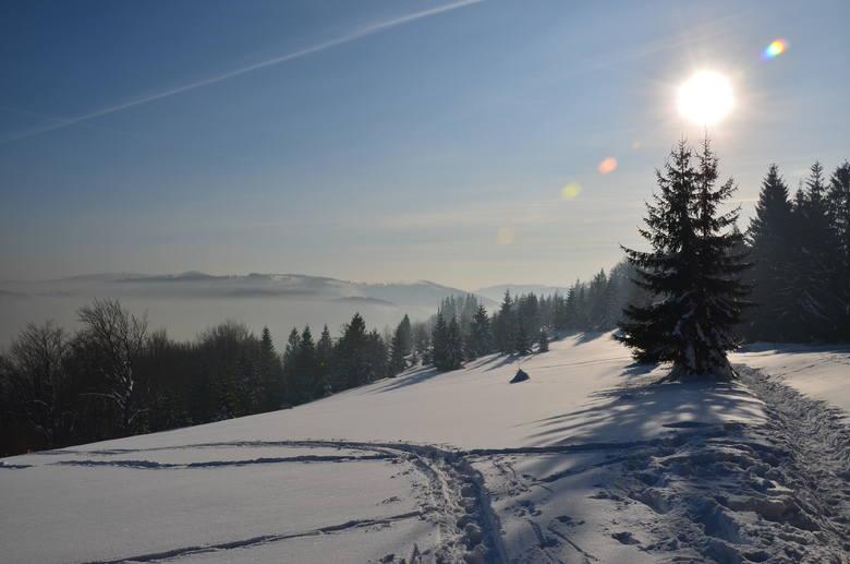 Nie siedź w domu, idź na spacer, ale... Nie szarżuj, gdy trzyma zima!