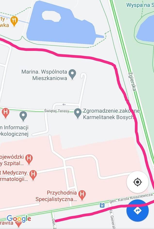 """""""Wracałam ze spaceru w dolinie Sokołówki, naprzeciwko parku na Julianowie, w towarzystwie mojej Luny oraz dwóch koleżanek i ich psów: Trufli i Chałki"""""""