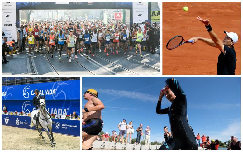 Pasjonujesz się sportem? W 2019 r. Poznań będzie gospodarzem wielu dużych imprez sportowych, dających szansę zobaczenia na żywo wielu gwiazd różnych