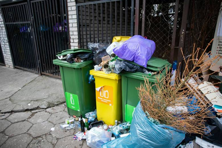 Jak podaje Eurostat, Polska znajduje się na 14. miejscu w Unii Europejskiej, jeżeli chodzi o ilość wytwarzanych odpadów w przeliczeniu na osobę. W okresie