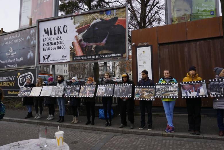 - Przeciętny okres użytkowania krowy mlecznej w Polsce wynosi 3,1 roku. W celu utrzymania nieprzerwanej produkcji mleka, co roku jest sztucznie zapładniana