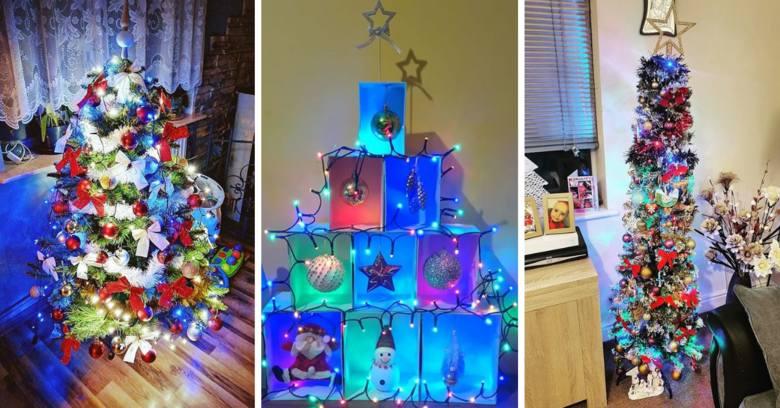 Choinka jest nieodzownym elementem Świąt Bożego Narodzenia. Zobaczcie zdjęcia świątecznych drzewek przesłane przez naszych Czytelników. Wybraliśmy kilkadziesiąt