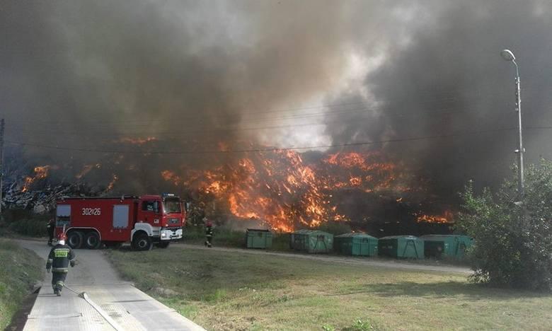 W piątek popołudniu w Studziankach wybuchł wielki pożar na wysypisku śmieci. Z żywiołem walczyło kilkadziesiąt zastępów straży pożarnej z regionu, a