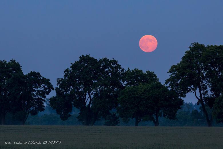 Czerwcowa pełnia Księżyca często nazywana jest Truskawkową. Nazwę tą stosowały indiańskie plemiona Algonkinów. Odnosi się ona do okresu zbiorów truskawek.