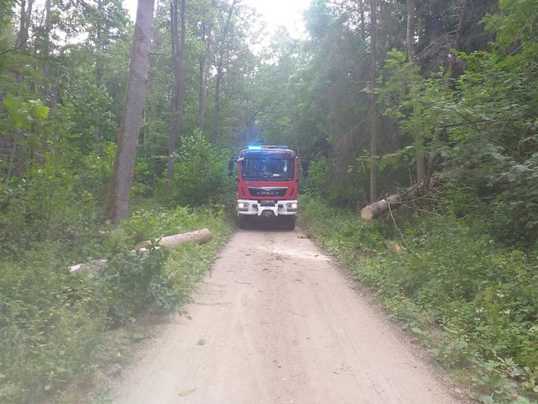 Drzewa i niebezpiecznie zwisające na drogę gałęzie usuwali m.in. strażacy z OSP Narewka