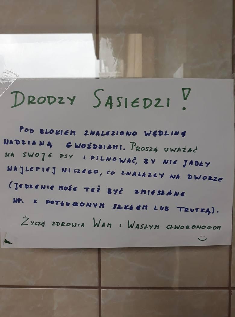 Kiełbasy z gwoździami i szkłem są rozrzucane na ulicach Gdańska, Gdyni i Sopotu! Ktoś chce uśmiercić wiele psów. Uważajcie na czworonogi!