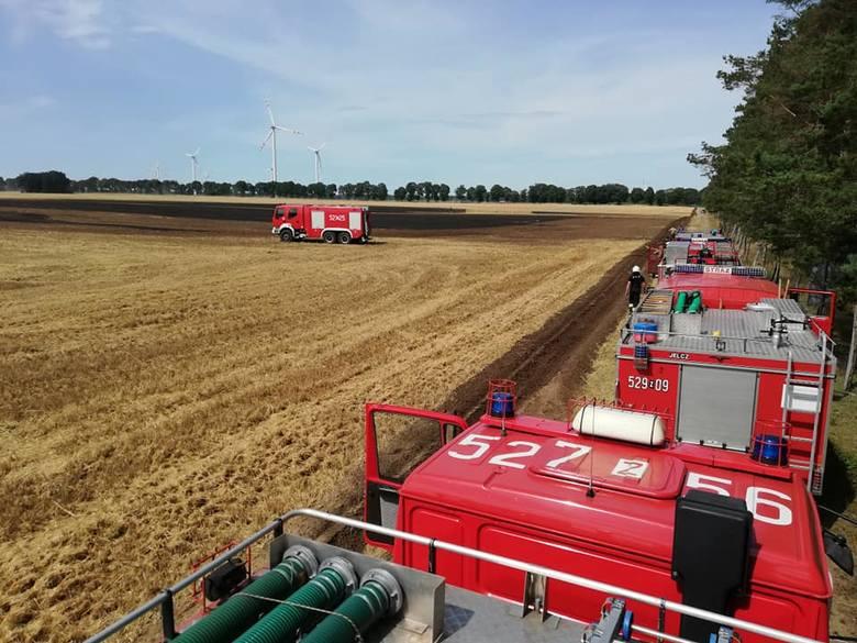 Niedaleko Tychowa (gmina Sławno) doszło do groźnego pożaru ścierniska. W akcji gaśniczej brało łącznie udział 7 zastępów Straży Pożarnej. - Pożar wybuchł