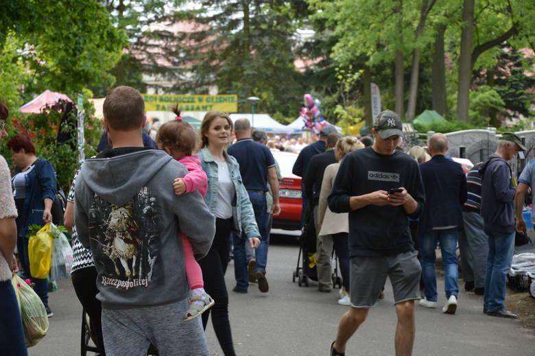 Było kolorowo, wesoło i pysznie. Tak można opisać Targi  Rolnicze  w Gliśnie, które trwały przez weekend 25 i 26 maja. Na targach każdy mógł znaleźć