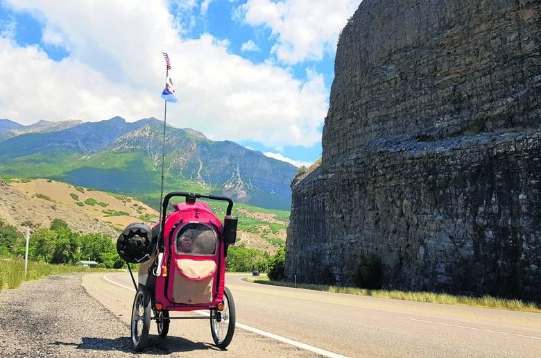 Szedłem po amerykańskich drogach, pchając przed sobą niewielki wózek. Wiele razy dziennie słyszałem pytanie: dlaczego idziesz?