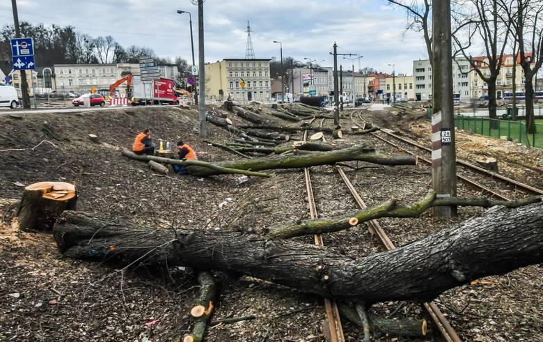 Trwa wycinka drzew przy ulicy Toruńskiej, obok ronda Bernardyńskiego. To niestety nieuniknione, bo związane z budową linii tramwajowej, a tym samym rozbudową