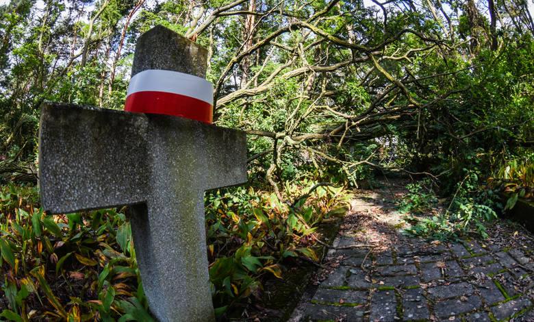 Teren cmentarza z okresu II wojny światowej znajdującego się w Smukale przy ul. Baranowskiego w czasie ostatnich wichur i nawałnic został dosłownie zdemolowany przez poprzewracane pnie i gałęzie drzew, głównie akacji.<br />