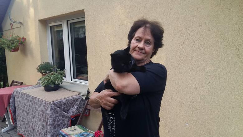 Ewa Włodkowska od lat pomaga kotom