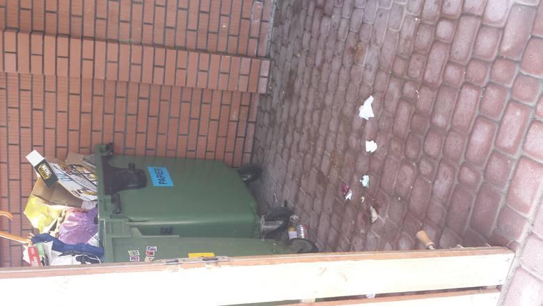 Przy ul. Bieckiej śmieci są układane na ziemi. W pergolach jest z tego powodu brudno i panuje bałagan.
