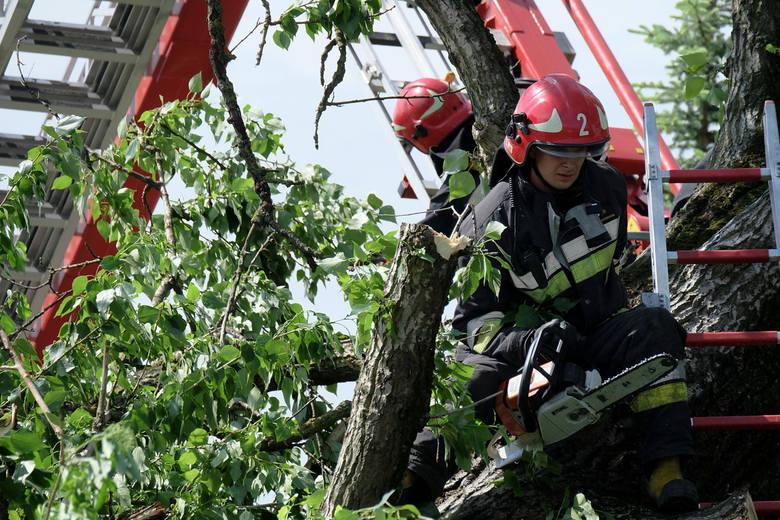 Wiatr zrywał dachy i łamał drzewa