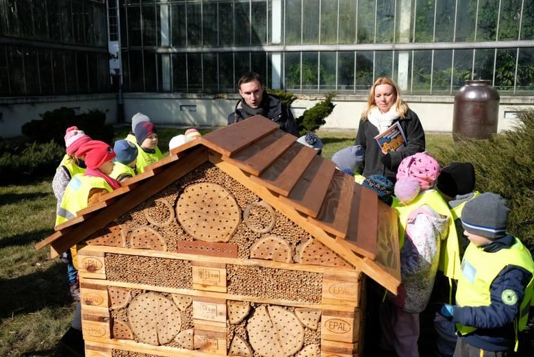 Park Wilsona: Zamontowano siedem budek dla wróbli oraz otwarto specjalny hotel dla... pszczół murarek