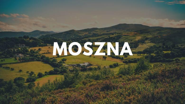 Najbardziej znana polska Moszna to wieś w województwie opolskim, w której znajduje się pałac. Obok opolskiego, województwo lubelskie ma również swoją