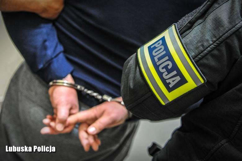 Wszyscy zatrzymani usłyszeli zarzuty związane z udziałem w zorganizowanej grupie przestępczej, dokonującej oszustw, z których podejrzani uczynili sobie