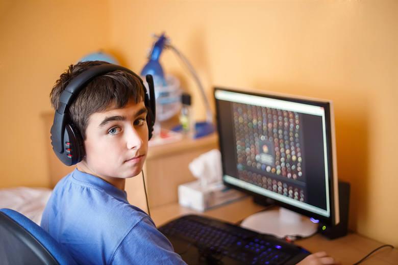 Coraz większą część swojego wolnego czasu dziecko chce spędzać przy komputerze i odchodzi od swoich innych zainteresowań.Sklepy online jeszcze długo