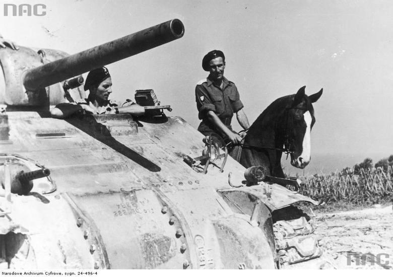 """Wachmistrz 1 Pułku Ułanów Krechowieckich ze zdobycznym koniem """"Lalą"""" obok czołgu M4 Sherman.  <font color=""""blue""""><a href="""" http://www.audiovis.nac.gov.pl/obraz/224159/3b0946d4f954ca2ac6b4c2e6598f373e/""""><b>Zobacz zdjęcie w zbiorach NAC</b></a> </font>"""