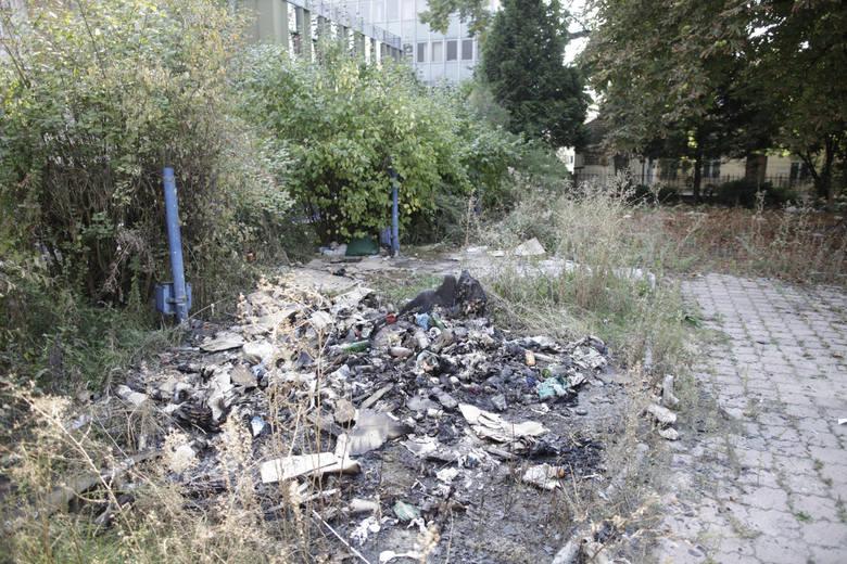 Niszczejący pałacyk przy ul. Sempołowskiej w Opolu.