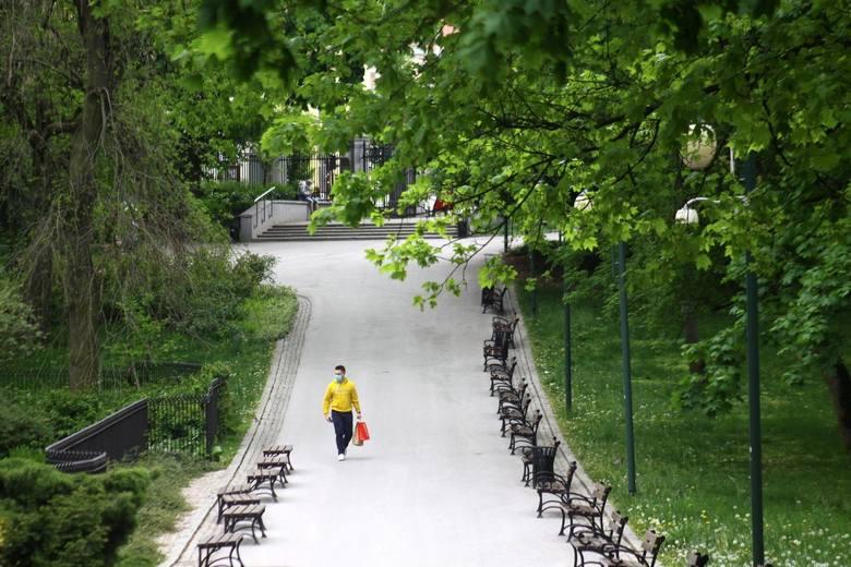 Ma ok. 12 ha powierzchni i do dziś jest jednym z ulubionych miejsc do spacerów. Ogród Saski w latach 2012-2013 przeszedł gruntowną rewitalizację stając