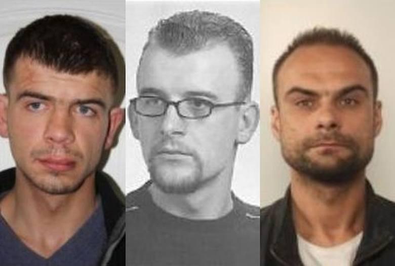 Świętokrzyska policja ściga kilkudziesięciu kierowców, którym postawiono zarzut prowadzenia pojazdu mechanicznego po pijanemu lub pod wpływem narkotyków.
