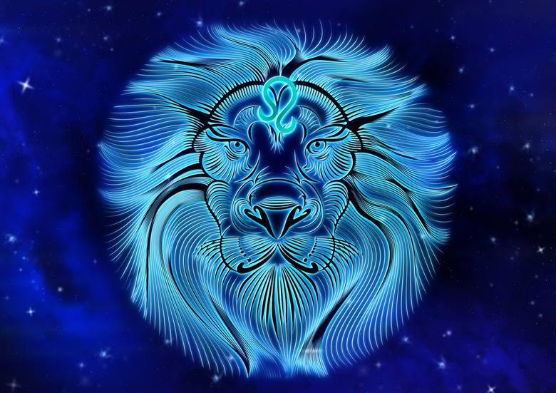 Lew (23 lipca - 22 sierpnia)Nowy Rok da Lwom lekcję pokory, za sprawą której nabiorą chęci na to, aby nauczyć się... oszczędności. Chęć skupiania na