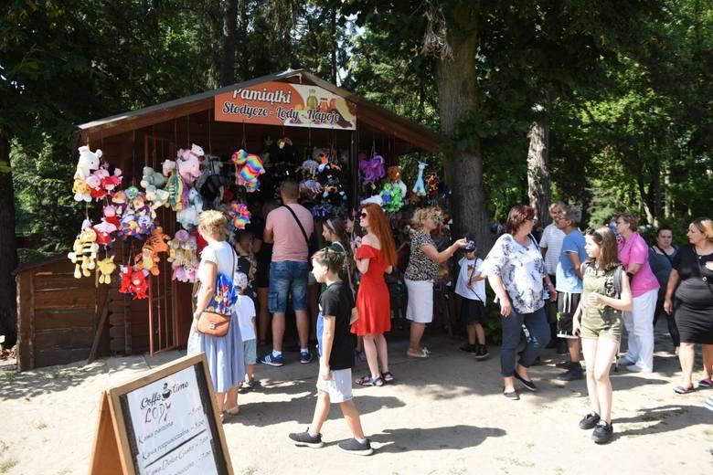 Na zakończenie wakacji Ogród Zoobotaniczny w Toruniu organizował festyn rodzinny. Były między innymi zabawy cyrkowe, animacje i konkursy. Uczestnicy