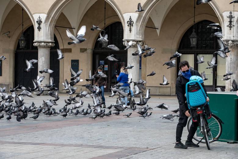Niedziela w Rynku i okolicach
