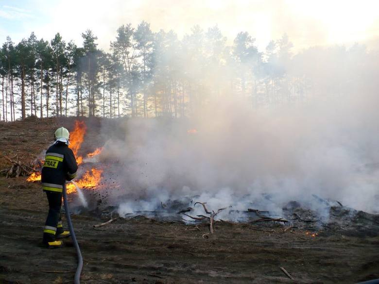 Z żywiołem walczyli strażacy z trzech jednostek