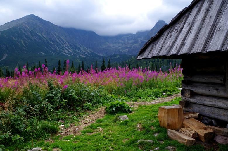 PITAWAL Poznała Dobrego Ducha w internecie. 22-latkę w Tatrach zabił zły duch