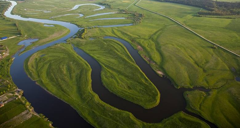 Zakola rzeki Narew