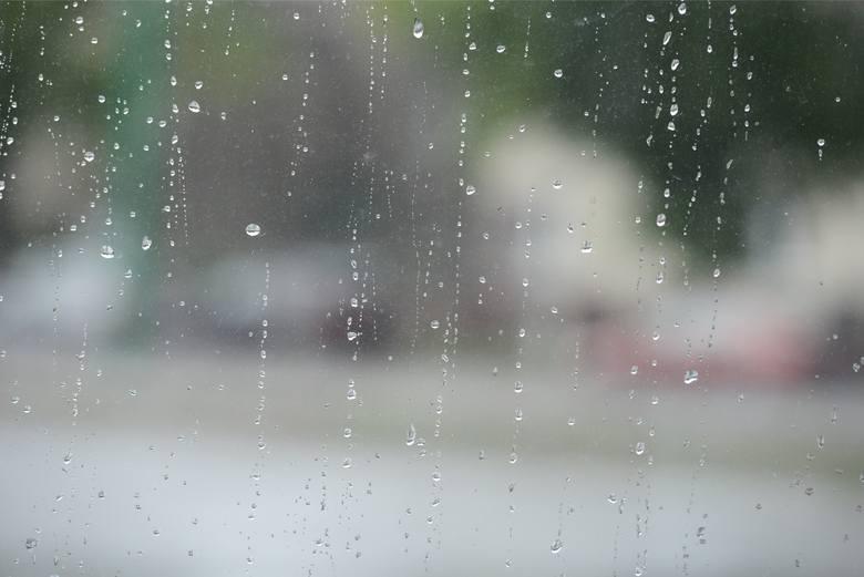 Nadszedł grudzień, ale pogoda niemalże wiosenna. Przez cały tydzień temperatura wahać się będzie od 4 do nawet 10 stopni Celsjusza. Prawie codziennie