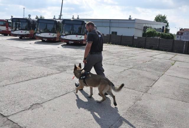W województwie opolskim ruszyły eliminacje do XIX Kynologicznych Mistrzostw Polski Policji.