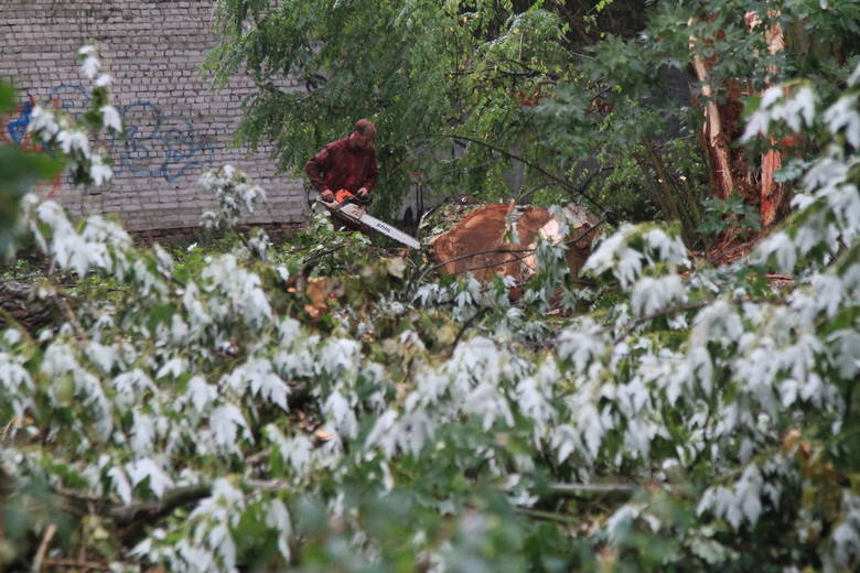 Burza w Łodzi. Trwa usuwanie skutków nawałnicy, która przeszła nad Łodzią [ZDJĘCIA]