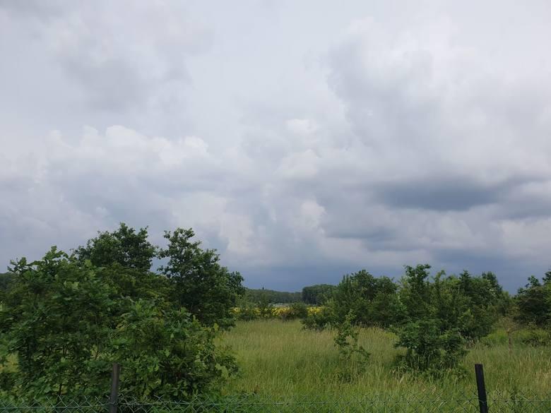 Burza w Łodzi i regionie! Sprawdź, gdzie jest burza. MAPA BURZOWA ONLINE, RADAR OPADÓW