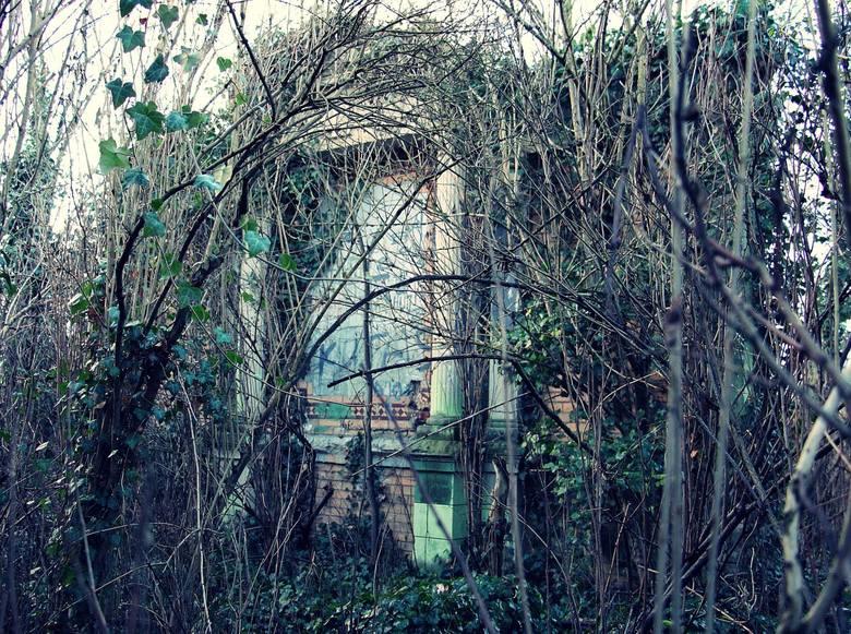 Na Ziemi Lubuskiej jest wiele starych i często zapomnianych cmentarzy. Są to głównie nekropolie ewangelickie, czy żydowskie, na których spoczywają dawni