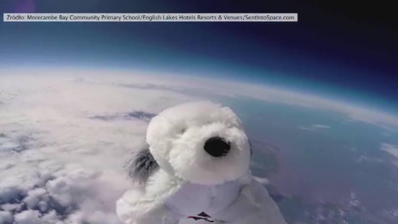 Uczniowie podstawówki wysłali w stratosferę pluszowego psa
