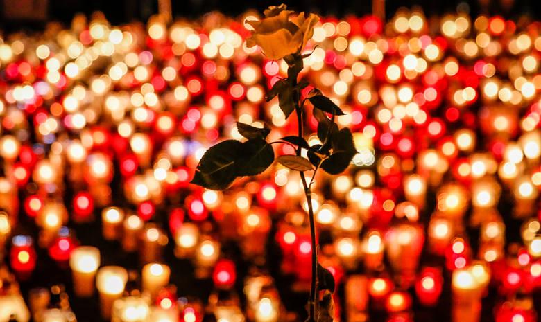 Największe serce świata zapłonęło z 27 tysięcy zniczy na Placu Solidarności w Gdańsku.