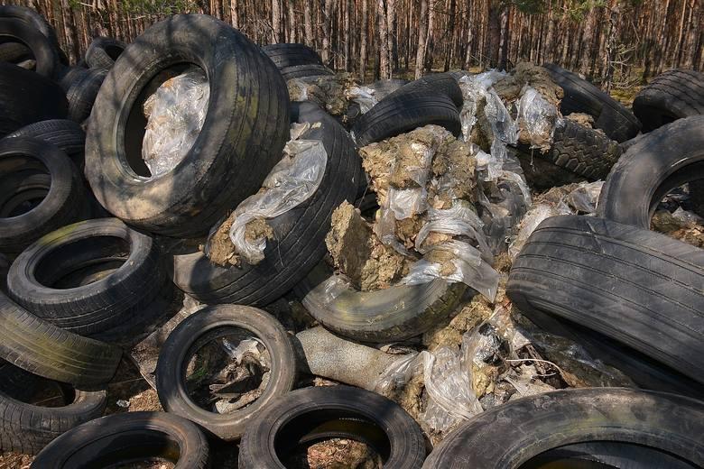 W lesie na terenie powiatu żarskiego ktoś wyrzucił setki opon i inne odpady. Leśnicy szukają sprawcy. Koszt utylizacji śmieci to 20 tys. zł