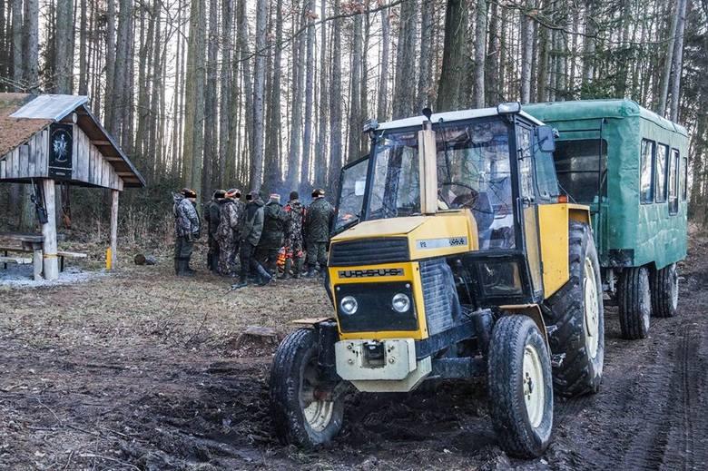 Aktywiści zablokowali polowanie i... posprzątali las
