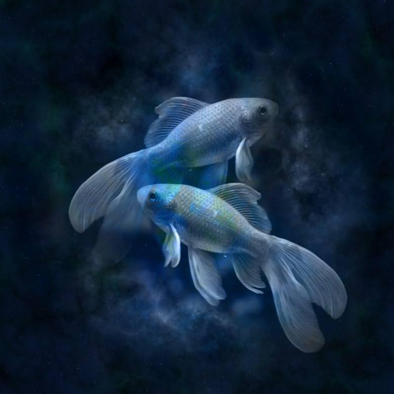 Horoskop miesięczny dla osób spod znaku: RYBYRyby (19.02.-20.03)Horoskop miesięczny na październik dla Ryb jest łaskawy. Odetchniesz od palących problemów