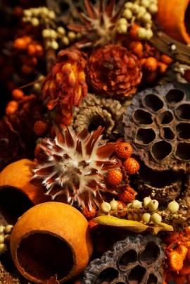 W potpourri, poza elementami zapachowymi, powinny też się znaleźć dekoracyjne.