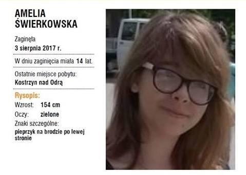 Amelia Świerkowska zaginęła na Przystanku Woodstock