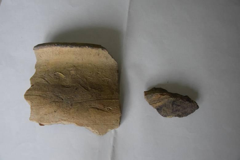 Fragmenty wczesnośredniowiecznej ceramiki z Zamczyska.