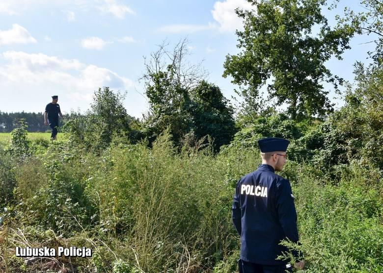 LUBUSKIE Poszukiwania trwały dwa dni. Kobieta została odnaleziona w lesie