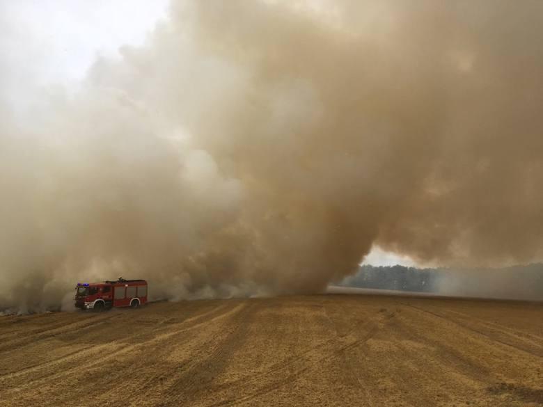 We wtorek pomiędzy miejscowościami Żołędno i Jezierzyce w gminie Połczyn-Zdrój doszło do poważnego pożaru ścierniska. Płonęła powierzchnia ponad 15 ha.