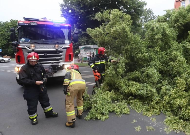 Burza w Szczecinie i regionie. Około 140 interwencji straży pożarnej