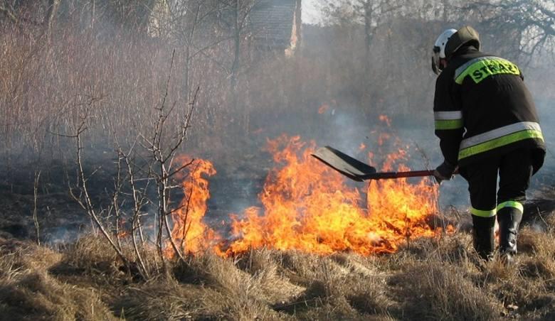Z nastaniem przedwiośnia rośnie zagrożenie pożarowe związane zwypalaniem traw. Warto przypomnieć, że proceder ten jest niezgodny zprawem igrożą za